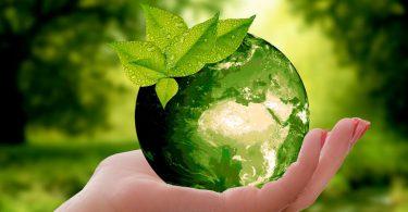 Día Mundial del Medio Ambiente ViamoTutti
